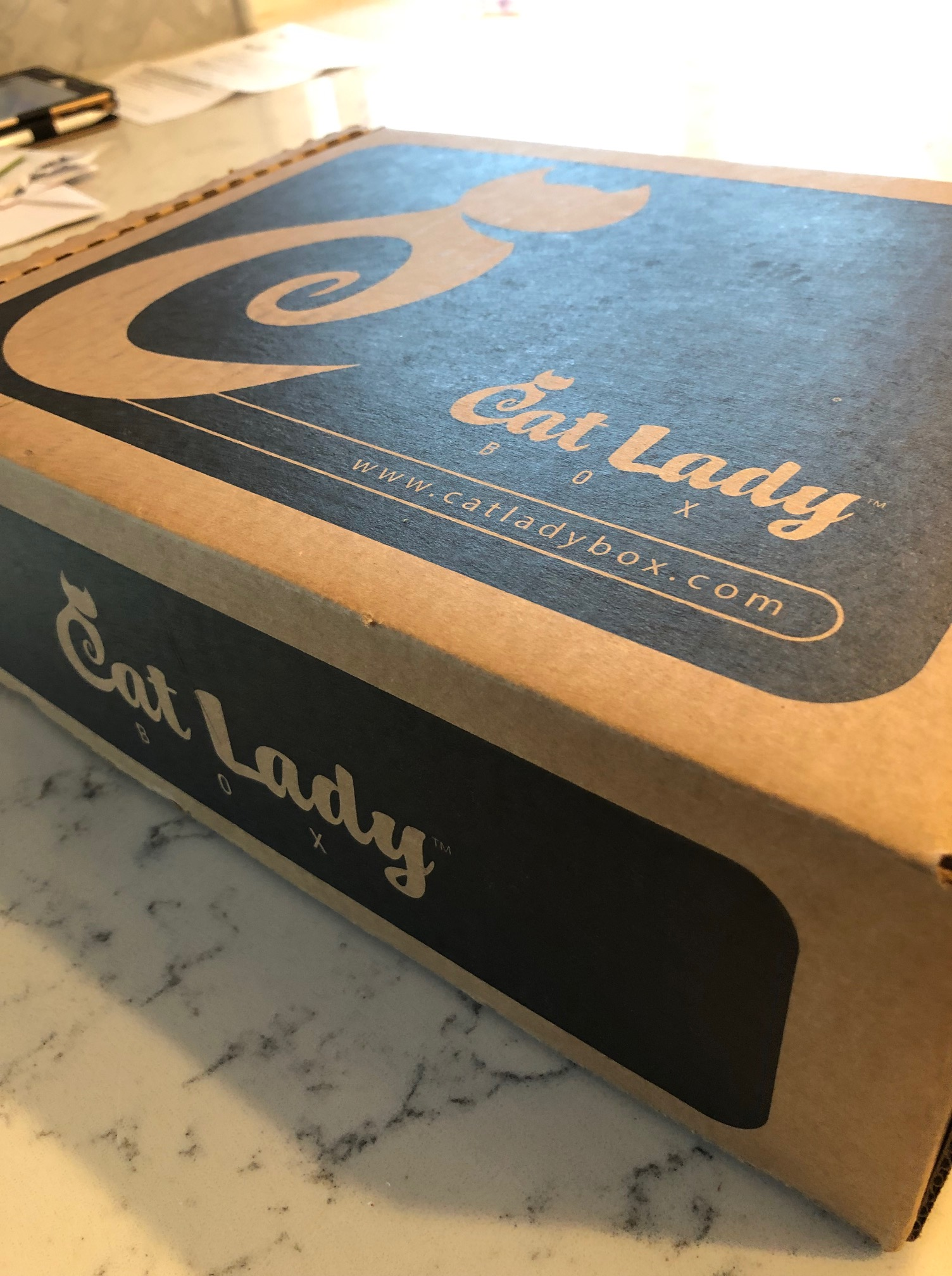 cat-lady-box-review